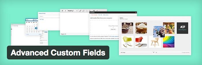 advanced custom fields wordpress plugin for development