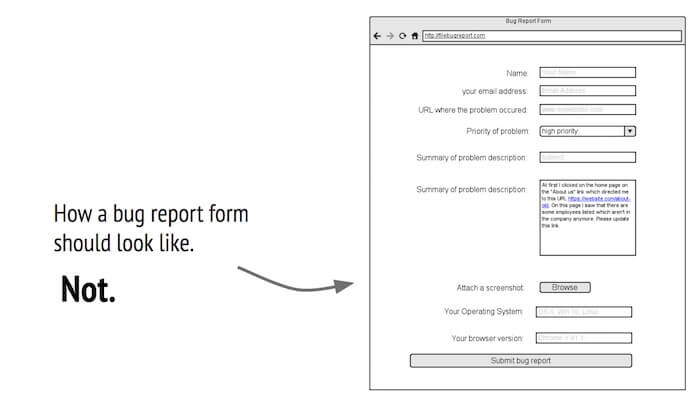 What is a bug report?
